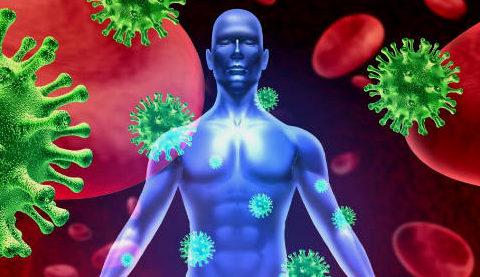 Человек и вирусы