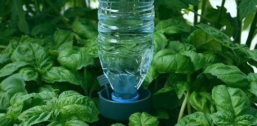 пластиковая бутылка для автополива