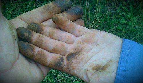 руки после грибов
